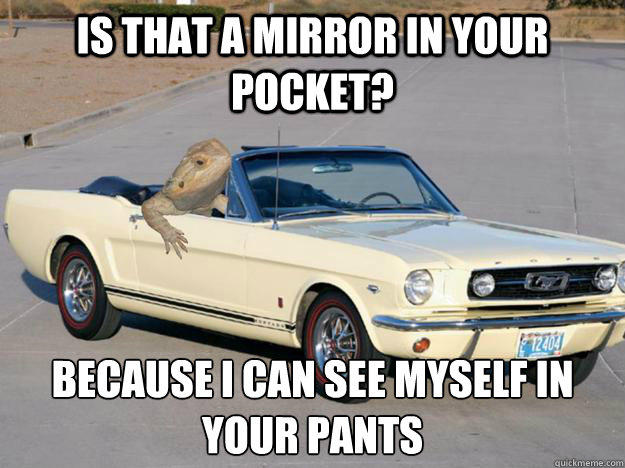 Is that a mirror in your pocket? Because I can see myself in your pants