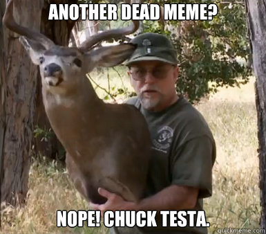 Another dead meme? Nope! Chuck Testa.