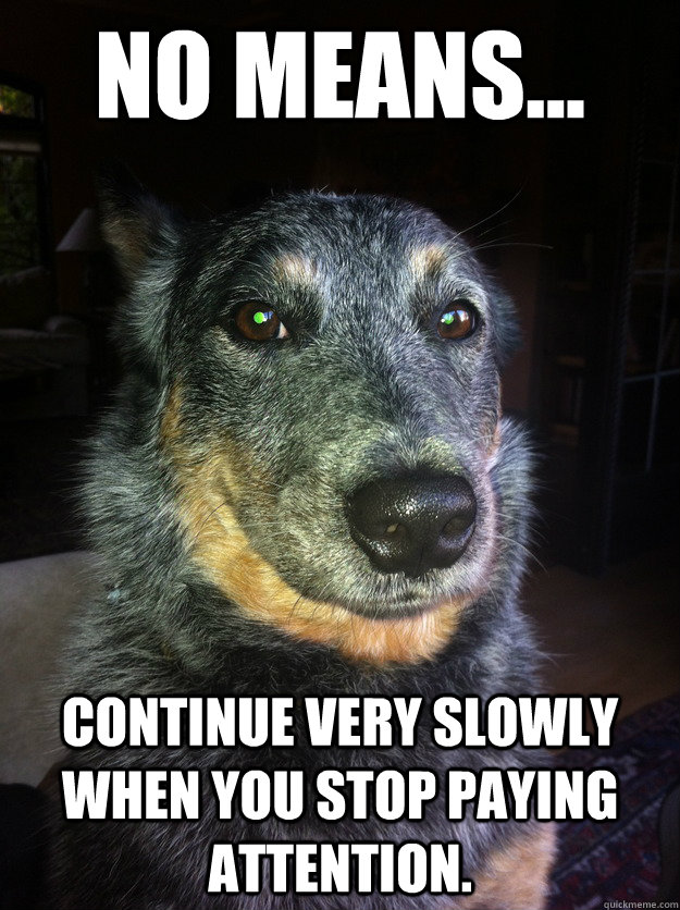 No means... Continue very slowly when you stop paying attention. - No means... Continue very slowly when you stop paying attention.  Sly Dog