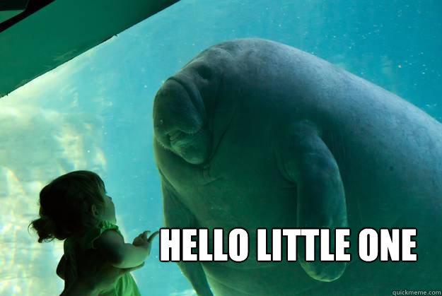 hello little one overlord manatee quickmeme