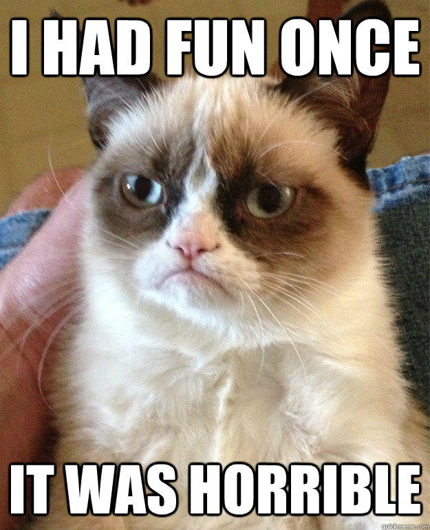 I had fun once It was horrible - I had fun once It was horrible  Grumpy Cat