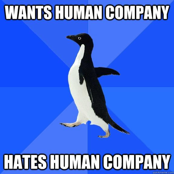 wants human company hates human company - wants human company hates human company  Socially Awkward Penguin