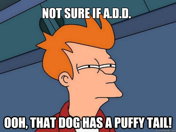 Not sure if A.D.D. Ooh, that dog has a puffy tail! - Not sure if A.D.D. Ooh, that dog has a puffy tail!  Futurama Fry