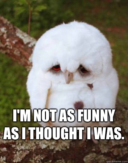 I'm not as funny as I thought I was.  -  I'm not as funny as I thought I was.   Depressed Baby Owl