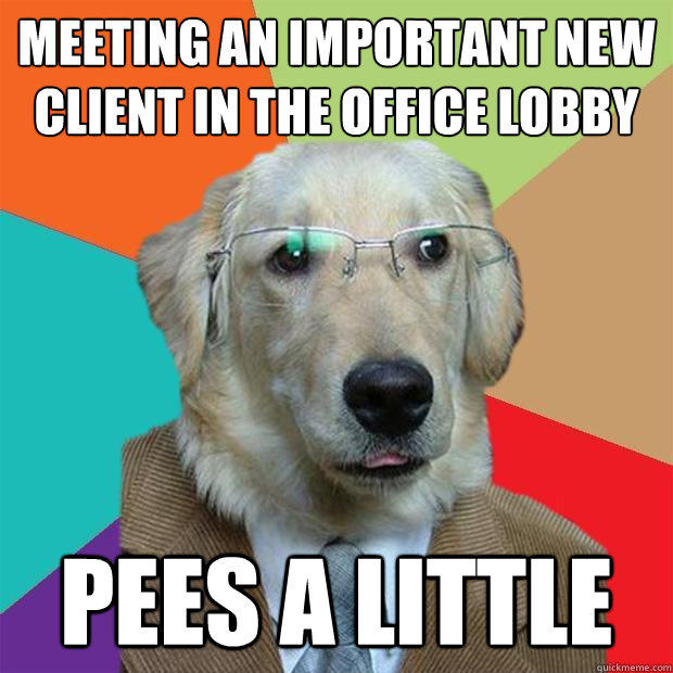 Meeting an important new client in the office lobby Pees a little - Meeting an important new client in the office lobby Pees a little  Business Dog