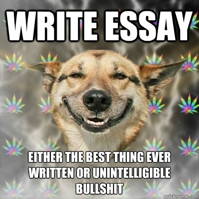 write essay either the best thing ever written or unintelligible  write essay either the best thing ever written or unintelligible bullshit write essay either the