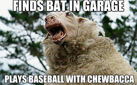 Finds Bat in garage Plays Baseball with Chewbacca