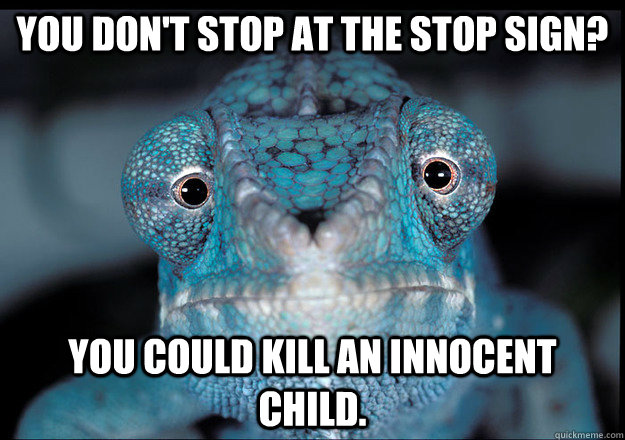 You don't stop at the stop sign? YOU COULD KILL AN INNOCENT CHILD. - You don't stop at the stop sign? YOU COULD KILL AN INNOCENT CHILD.  Guilt Trip Chameleon