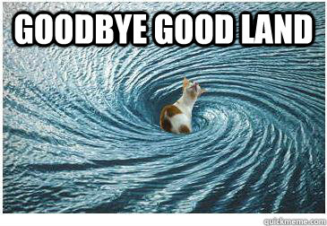 Goodbye Good Land  - Goodbye Good Land   Goodbye Cat
