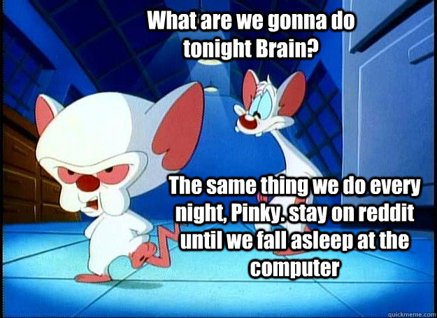 What are we gonna do tonight Brain? The same thing we do every night, Pinky. stay on reddit until we fall asleep at the computer - What are we gonna do tonight Brain? The same thing we do every night, Pinky. stay on reddit until we fall asleep at the computer  Pinky and the Brain