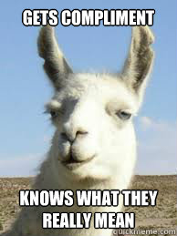 Gets compliment Knows what they really mean - Gets compliment Knows what they really mean  Llama