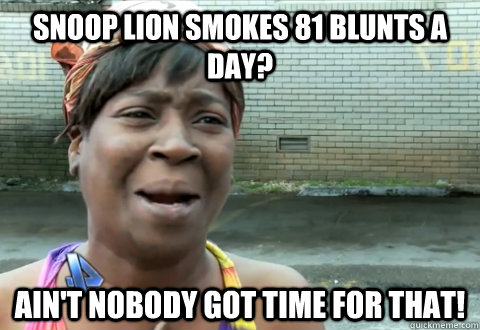 Snoop Lion smokes 81 blunts a day? Ain't nobody got time for that!