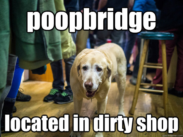poopbridge located in dirty shop - poopbridge located in dirty shop  noisebridgedogs