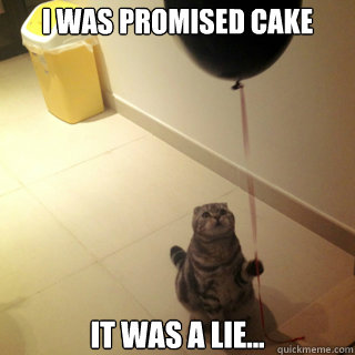 I was promised cake it was a lie... - I was promised cake it was a lie...  Sad Birthday Cat