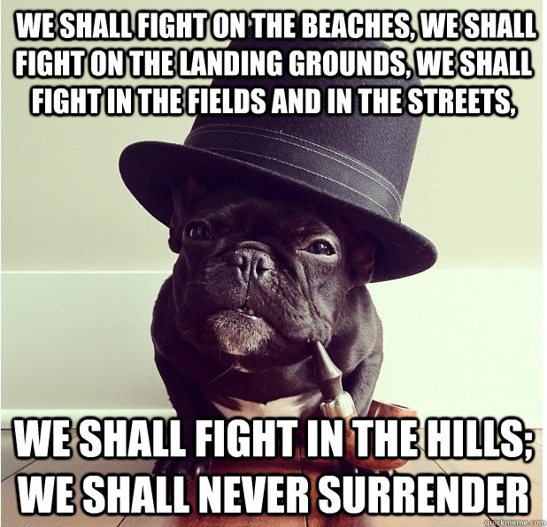 We shall fight on the beaches, we shall fight on the landing grounds, we shall fight in the fields and in the streets,  we shall fight in the hills; we shall never surrender