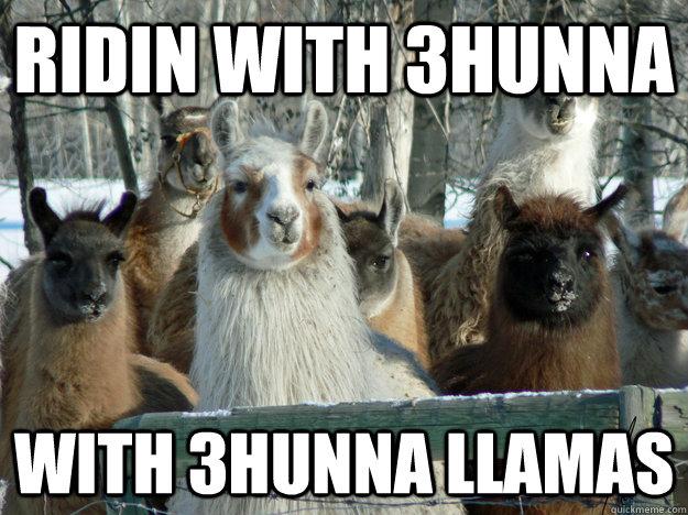 ridin with 3hunna with 3hunna llamas