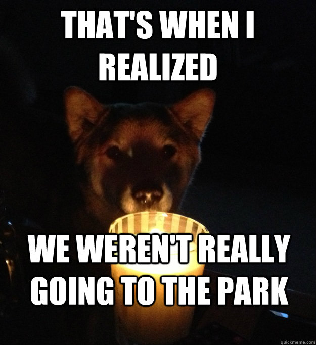 THAT'S WHEN I REALIZED WE WEREN'T REALLY GOING TO THE PARK  Scary Story Dog