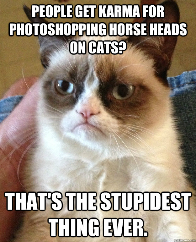 People get karma for photoshopping horse heads on cats? That's the stupidest thing ever. - People get karma for photoshopping horse heads on cats? That's the stupidest thing ever.  Misc
