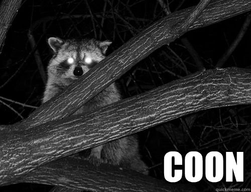 Coon -  Coon  Misc