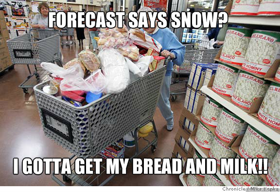 forecast says snow? I gotta get my bread and milk!!
