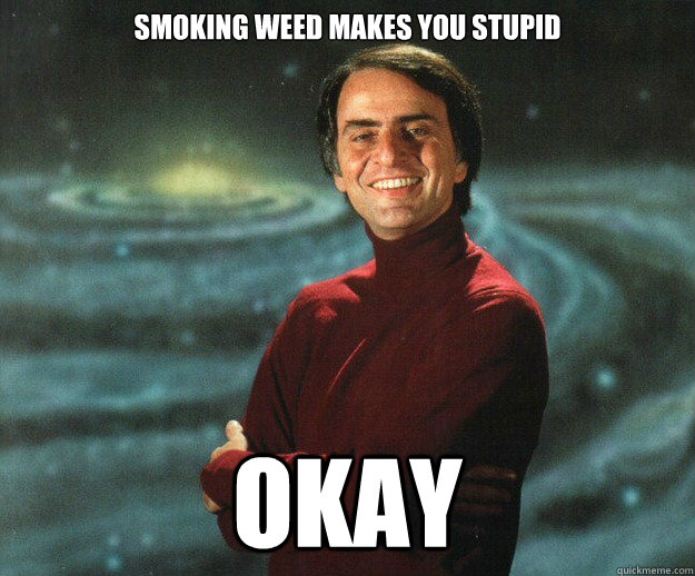 SMOKING WEED MAKES YOU STUPID OKAY - SMOKING WEED MAKES YOU STUPID OKAY  Misc