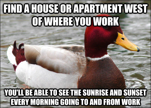 Find a house or apartment west of where you work you'll be able to see the sunrise and sunset every morning going to and from work - Find a house or apartment west of where you work you'll be able to see the sunrise and sunset every morning going to and from work  Malicious Advice Mallard