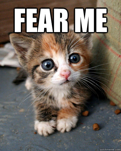 FEAR ME  - FEAR ME   Thesis Kitten