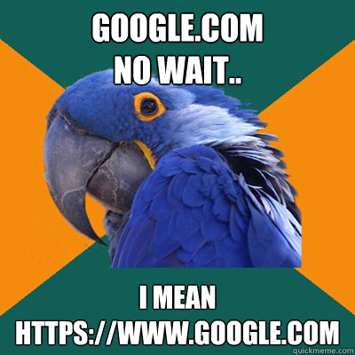 google.com no wait.. i mean https://www.google.com - google.com no wait.. i mean https://www.google.com  Paranoid Parrot