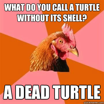 What do you call a turtle without its shell? A dead turtle
