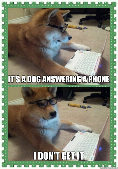 It's a Dog answering a phone I don't get it - It's a Dog answering a phone I don't get it  hello