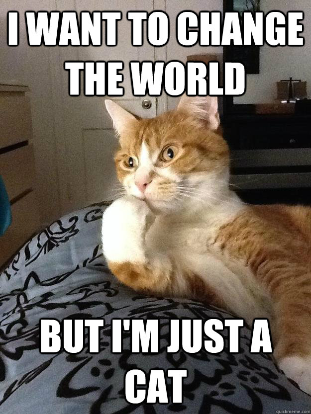 I want to change the world But i'm just a cat