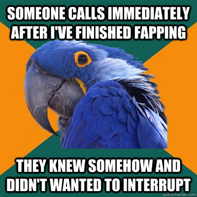 someone calls immediately after i've finished fapping they knew somehow and didn't wanted to interrupt - someone calls immediately after i've finished fapping they knew somehow and didn't wanted to interrupt  Paranoid Parrot