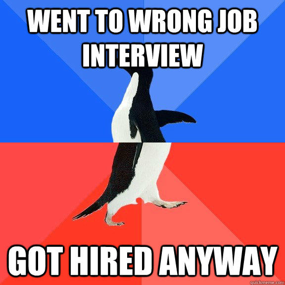 Went to wrong job interview Got hired anyway  Socially Awkward Awesome Penguin