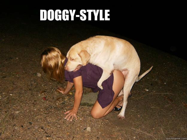 Movie television dog licks boy face