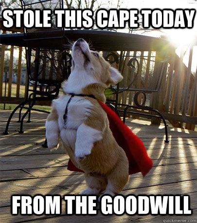 69a8bd2a124b798a53faba4a59c7cee47a5550115922ea31e9237ac7b89437cb stole this cape today from the goodwill corgi thug quickmeme