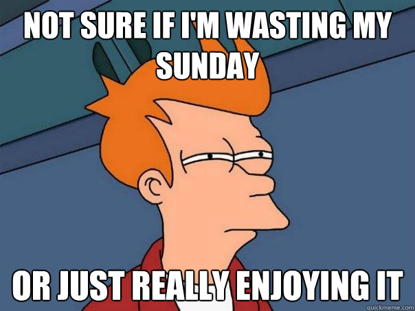 Not sure if I'm wasting my Sunday Or just really enjoying it - Not sure if I'm wasting my Sunday Or just really enjoying it  Futurama Fry