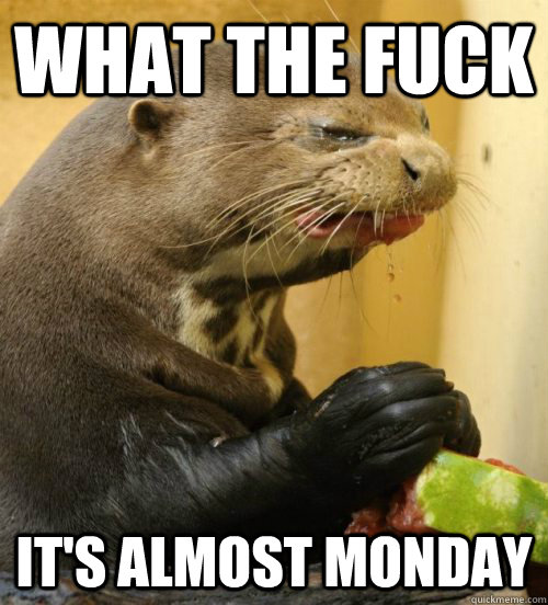 What the fuck It's almost monday