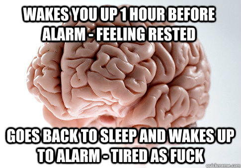 WAKES YOU UP 1 HOUR BEFORE ALARM - FEELING RESTED GOES BACK TO SLEEP AND WAKES UP TO ALARM - TIRED AS FUCK - WAKES YOU UP 1 HOUR BEFORE ALARM - FEELING RESTED GOES BACK TO SLEEP AND WAKES UP TO ALARM - TIRED AS FUCK  Scumbag Brain