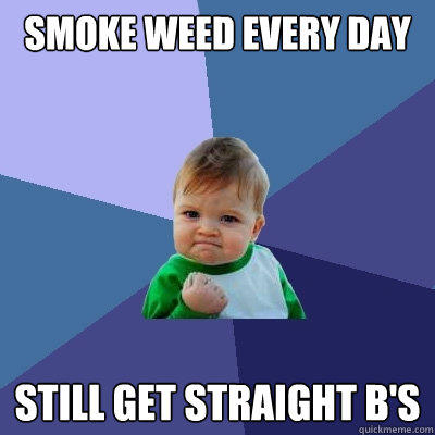 Smoke weed every day still get straight b's - Smoke weed every day still get straight b's  Success Kid