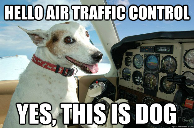 hello this is dog. hello air traffic control yes, this is dog