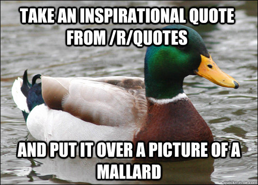 Take an inspirational quote from /r/quotes and put it over a picture of a mallard - Take an inspirational quote from /r/quotes and put it over a picture of a mallard  Actual Advice Mallard