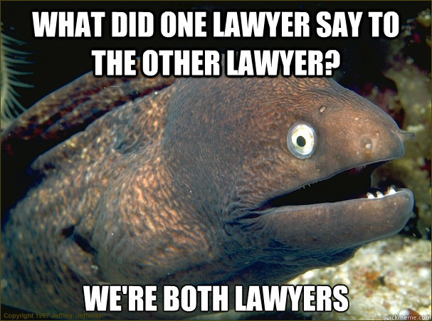 What did one lawyer say to the other lawyer? We're both lawyers - What did one lawyer say to the other lawyer? We're both lawyers  Bad Joke Eel