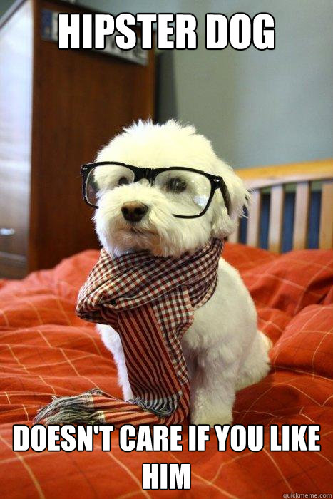 hipster dog doesn't care if you like him - hipster dog doesn't care if you like him  Hipster Dog