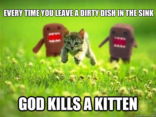 Every time you leave a dirty dish in the sink God kills a kitten