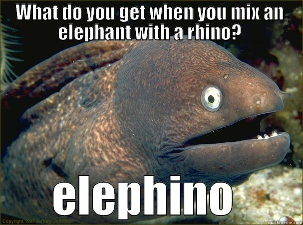 WHAT DO YOU GET WHEN YOU MIX AN ELEPHANT WITH A RHINO? ELEPHINO  Bad Joke Eel