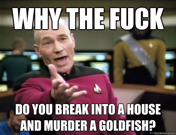 Why the fuck do you break into a house and murder a goldfish? - Why the fuck do you break into a house and murder a goldfish?  Misc
