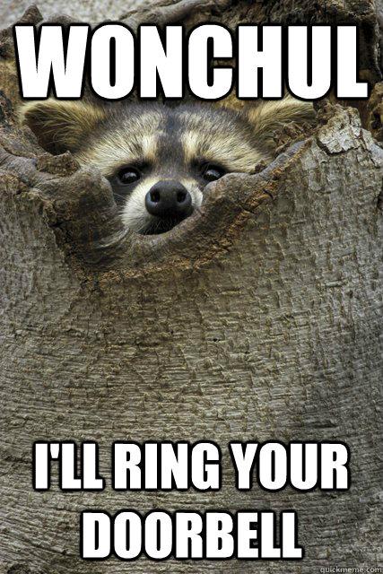 wonchul i'll ring your doorbell  Stalker Raccoon