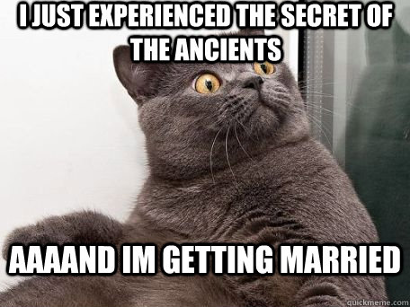 i just experienced the secret of the ancients aaaAnd im getting married - i just experienced the secret of the ancients aaaAnd im getting married  conspiracy cat