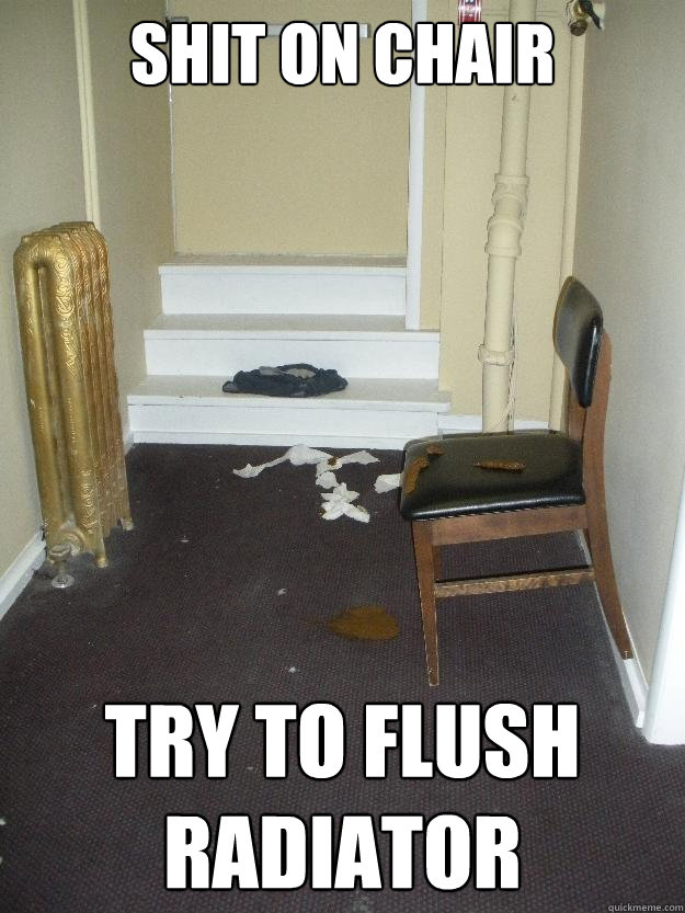 Shit on chair try to flush radiator