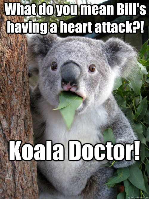 What do you mean Bill's having a heart attack?! Koala Doctor!